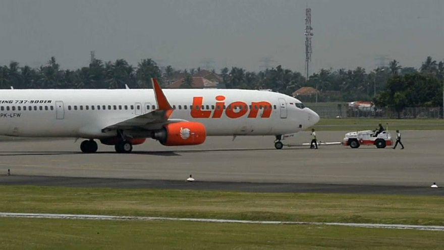 Flugdatenschreiber von indonesischer Maschine geborgen