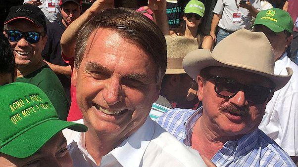 Brezilya: Tarım ve Çevre Bakanlıklarını birleştirmek isteyen Bolsonaro'dan geri adım
