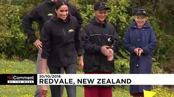 """مشاهد """"دون تعليق"""" من نيوزيلندا وإسبانيا"""