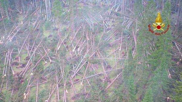 Fortes tempestades devastam florestas inteiras em Itália