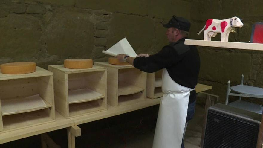 Emmental beats: Swiss researchers are playing hip-hop to cheese
