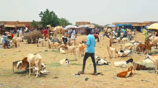 La población de Agadez pierde su mayor fuente de ingresos debido al descenso del flujo migratorio
