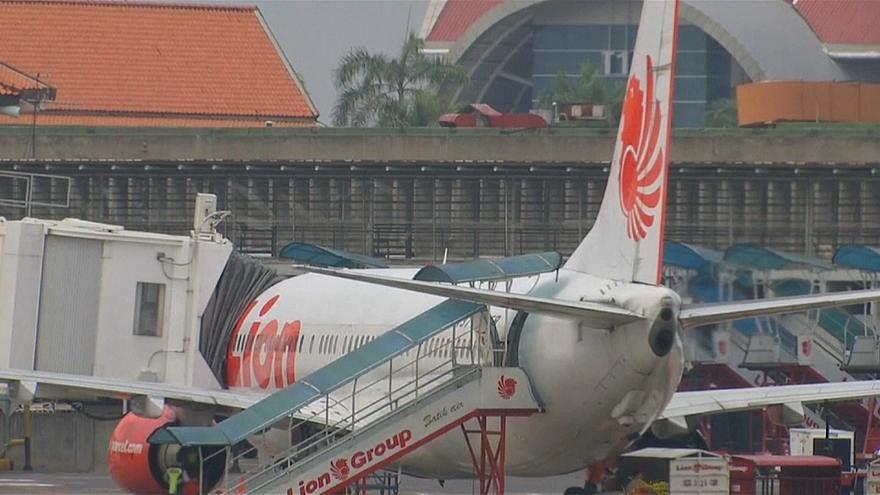 Endonezya'da düşen uçağın hız göstergesinde sorun olduğu belirlendi