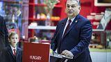 A kínai piac nyitva a magyar cégek előtt