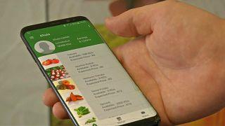 تطبيق جديد يساعد المزارعين على تسويق منتجاتهم في جنوب أفريقيا