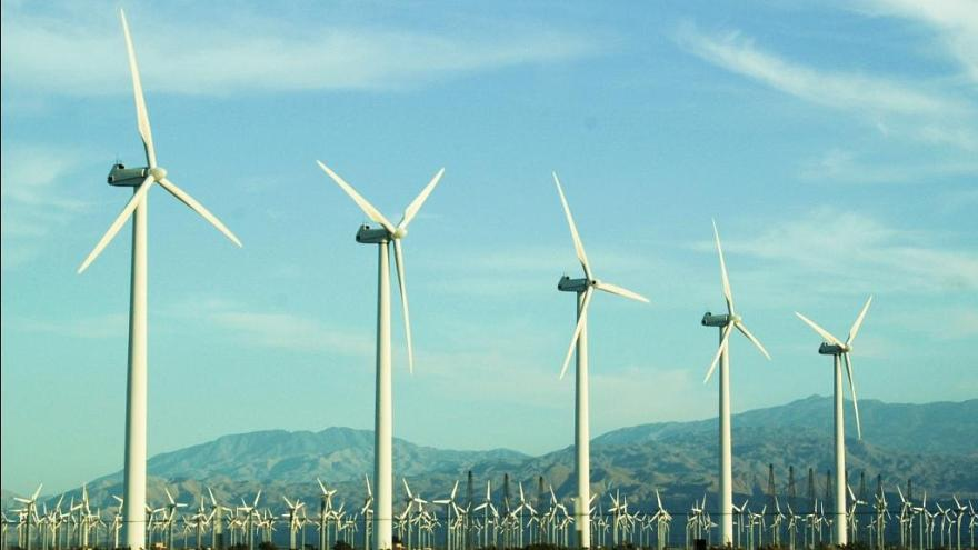 Rüzgar enerjisinin doğal yaşam üzerindeki beklenmedik olumsuz etkileri