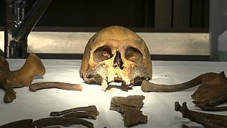 Watch: Forensic scientists search for identity of WWI skeleton