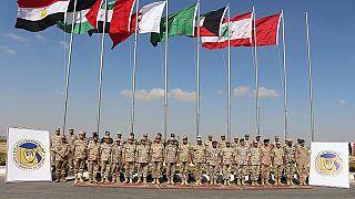 """خبير عسكري عربي ليورونيوز: """"نحن على عتبة تشكيل ناتو عربي"""" فهل يرى النور قريبا؟"""