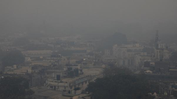Delhi pollution campaigners confronted by political apathy