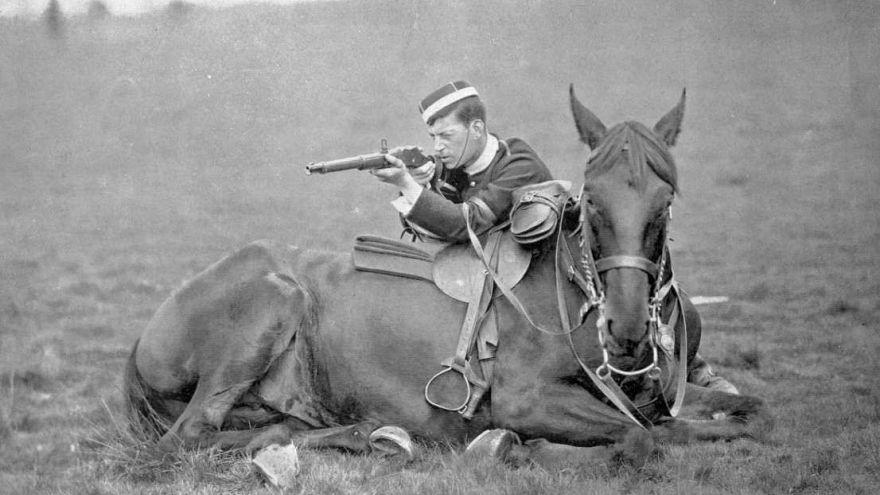 ناگفتههای جنگ جهانی اول؛ نقش حیوانات در پیروزی متفقین