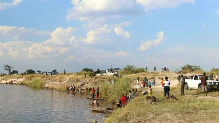 Hundreds of buffaloes drown in Botswana trying to escape lions