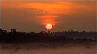Novo alerta de perigo na Amazónia