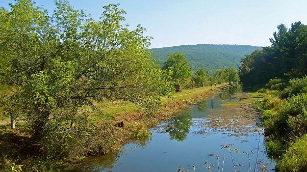 ترامادول وكافيين ومسكّنات في الحيوانات القريبة من الأنهار