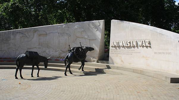 Animals in War Memorial in Park Lane, London