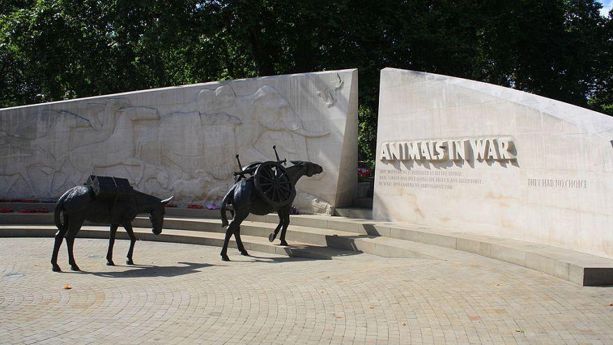 Animals in War Memorial in Park Lane, London