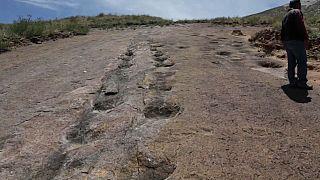La reserva natural en Bolivia que podría convertirse en el nuevo 'Parque Jurásico'