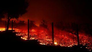 Πυρκαγιά στην Καλιφόρνια - Εκκενώνονται οι βίλες των αστέρων