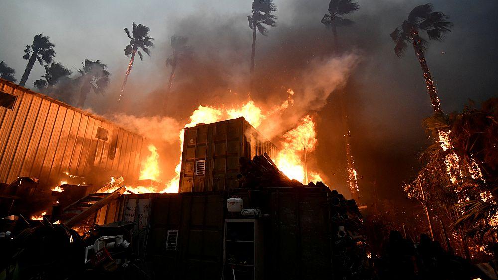 Калифорния в огне: 9 погибших во время пожаров — видео
