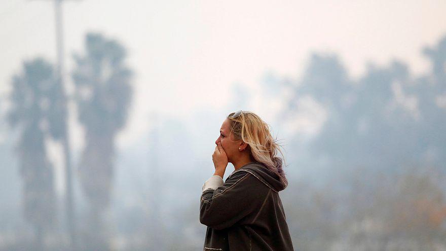 Fotoğraflarla Kaliforniya yangınları