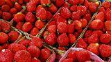 Nadeln in Erdbeeren gesteckt: 50-jährige Australierin angeklagt