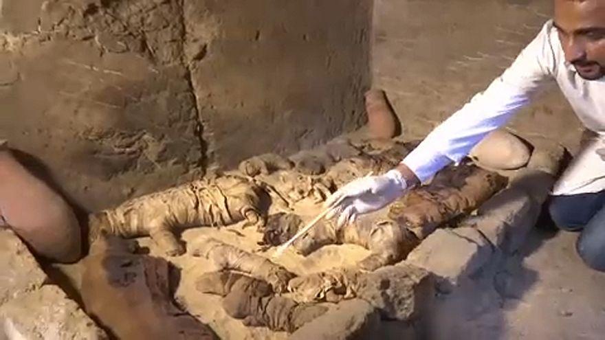 Ritka szkarabeusz-múmiák is előkerültek Egyiptomban
