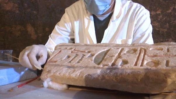 شاهد: اكتشاف غير مسبوق لخنافس الجعران المحنطة في مصر