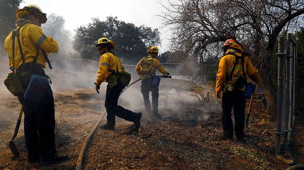 Incendies en Californie : plus de 42 morts et 200 disparus