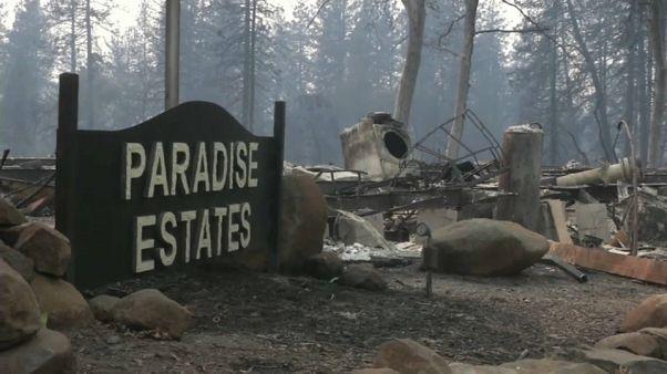 Más de 40 muertos y 200 desaparecidos en California