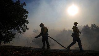 Kaliforniya orman yangınlarında bilanço kabarıyor