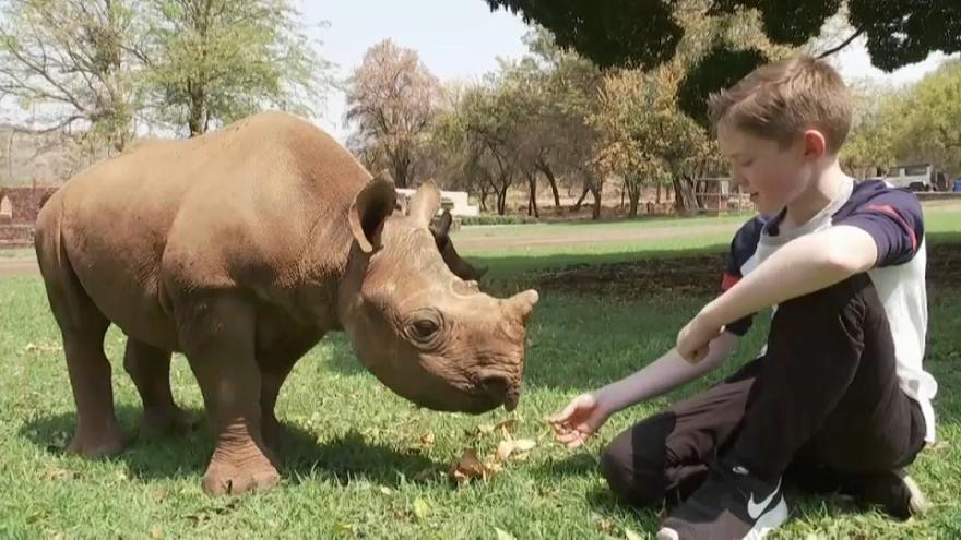 11-year-old raises €14,000 to save orphaned rhinos