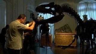Jurassic Dönemi'ne ait 2 dinozor iskeleti Paris'te açık artırmada satılacak