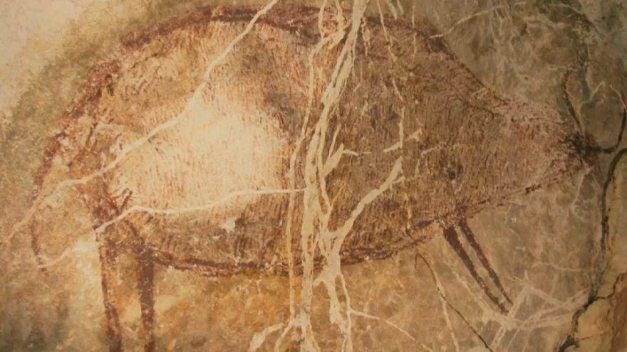 شاهد: اكتشاف أقدم رسومات كهفية عمرها 40 ألف سنة بمنطقة بورنيو في إندونيسيا