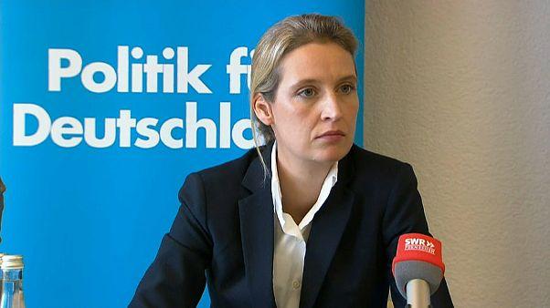 Justiz ermittelt: AfD kaufte Facebook-Likes mit der Schweiz-Spende