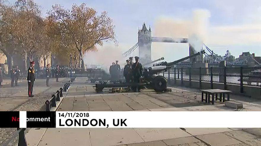 Prens Charles'ın 71'inci yaş günü Londra'da top atışlarıyla kutlandı