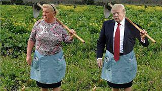 صورة معدلة تظهر الشبه بين ترامب ومزارعة البطاطا الإسبانية