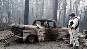 Incêndios ainda por controlar na Califórnia