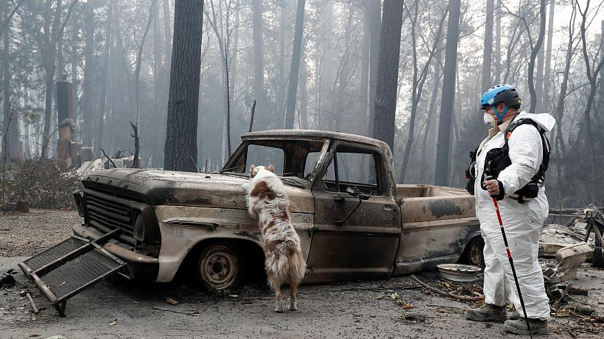 Number of missing people in California wildfires doubles to over 630
