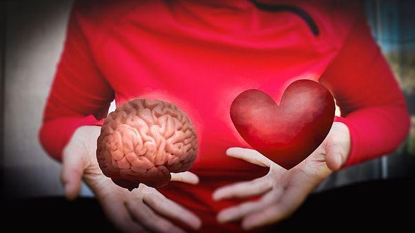 هوش هیجانی چیست و چگونه میتوان آن را تقویت کرد؟