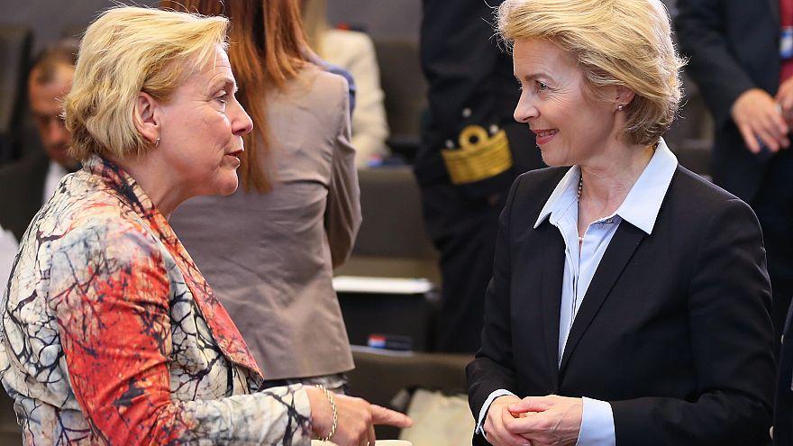 Hollanda Avrupa ordusunu istemiyor