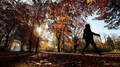 Temperatures in November above average