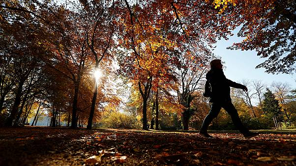 Temperatures in November above average