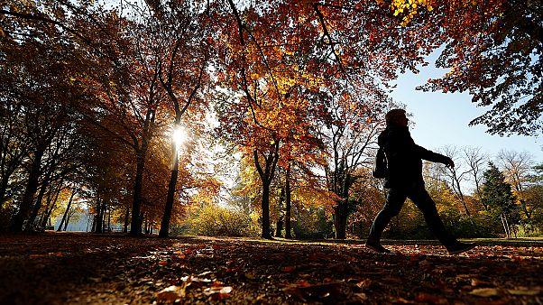 Un noviembre más cálido y con más CO2