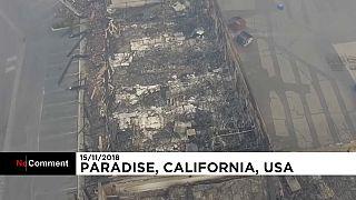 Kaliforniya'daki orman yangınlarında arama kurtarma çalışmaları devam ediyor