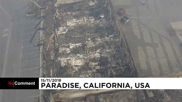 Scènes de désolation à Paradise