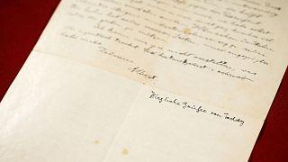 Einstein kız kardeşine yazdığı mektupta Nazi tehlikesine dikkat çekiyor