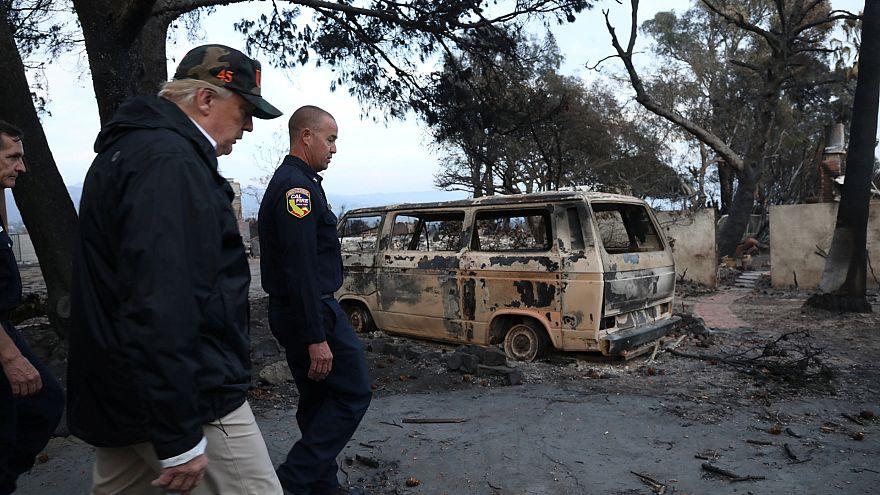 'Amerika'yı yeniden harika tırmıkla': Trump'ın yangın açıklaması alay konusu oldu