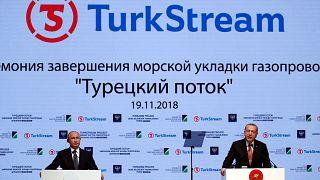 ترکیه؛ افتتاح بخشی از پروژه انتقال گاز روسیه با حضور ولادیمیر پوتین