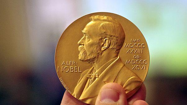 Nobel ödüllerini veren akademide, cinsel taciz skandalının ardından yeni seçim komitesi hazırlığı