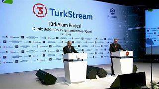 """بوتين وأردوغان: خط أنابيب """"ترك ستريم"""" يكتمل وليس موجها ضد أحد"""