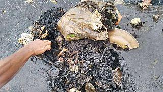 Csaknem hat kiló műanyagot találtak egy elpusztult bálna gyomrában